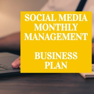 Social Media Monthly Management - Business Plan by Whizz.ie