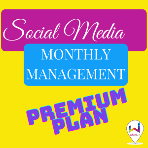 Social Media Monthly Management - Premium Plan from Whizz.ie