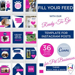Canva-Template-for-Instagram-Posts-for-Pet-Businesses---Whizz.ie